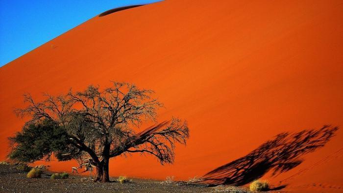 Фотографии с захватывающими природными пейзажами