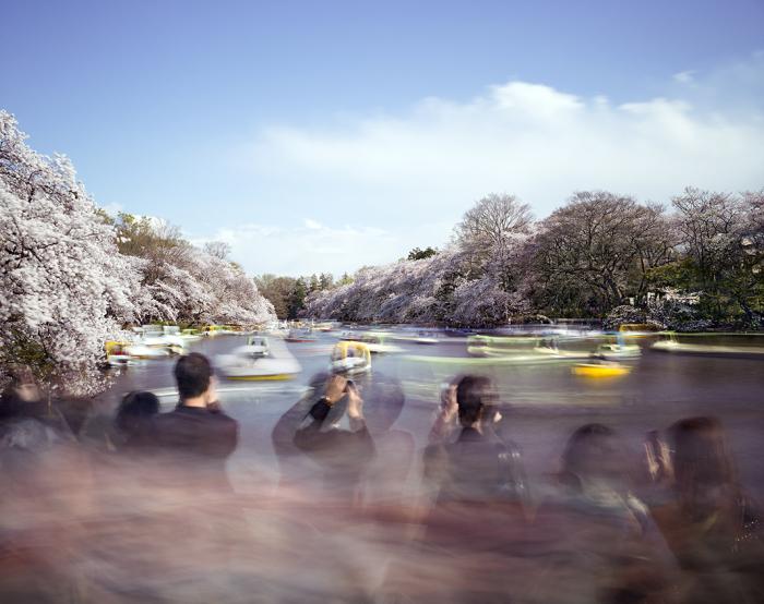 Ускользающие моменты реальности на фотографиях