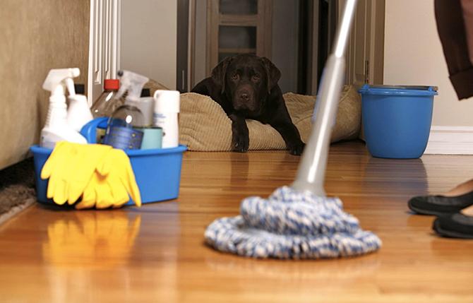 Полезные советы для ускорения уборки квартиры