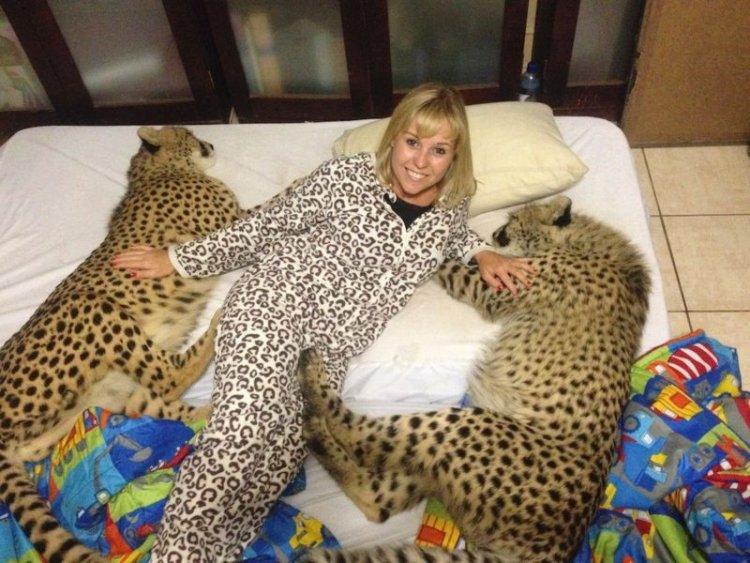Девушка, которая подружилась с гепардом