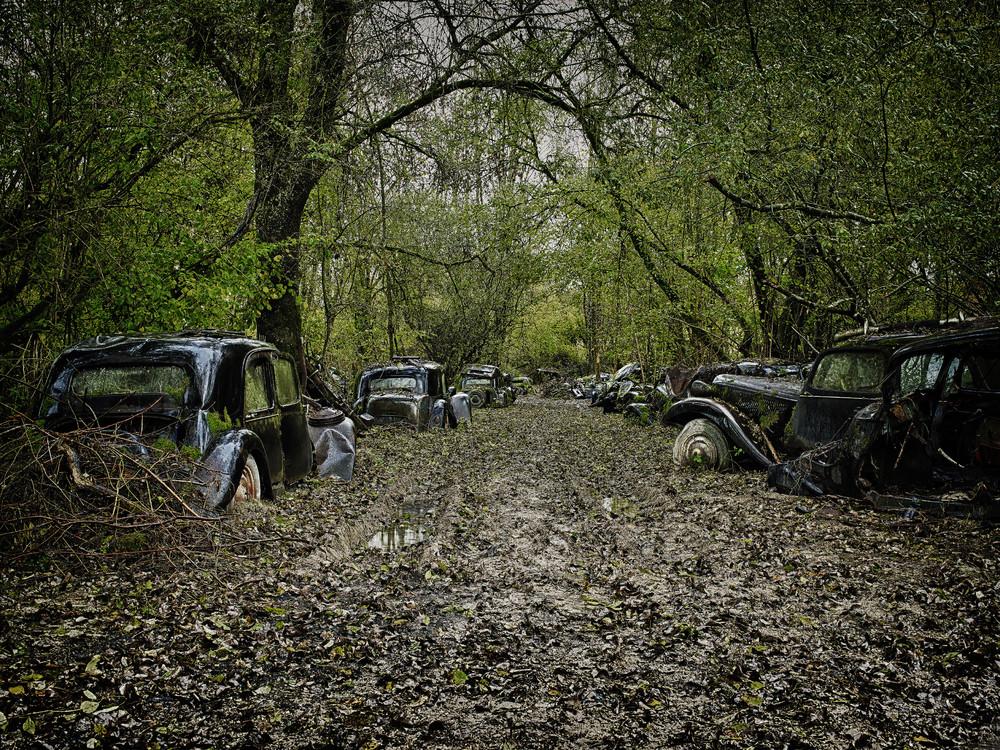 Кладбища автомобилей от фотографа Дитера Кляйна