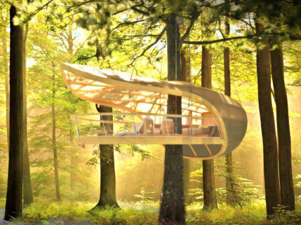 Замечательные домики на деревьях