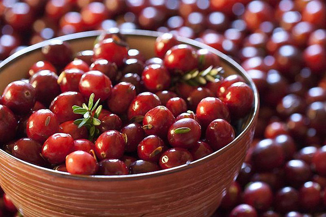 Продукты эффективно очищающие организм от токсинов