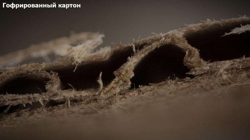 Обычные вещи под микроскопом