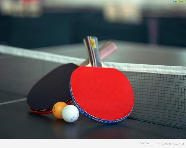 Интересные факты о Пинг-понге