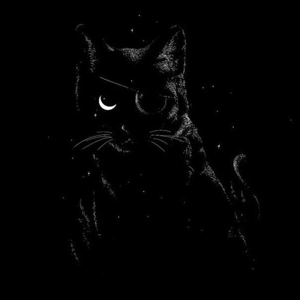 Забавные иллюстрации на тему кошек