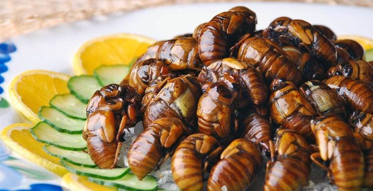 Шокирующие блюда национальных кухонь