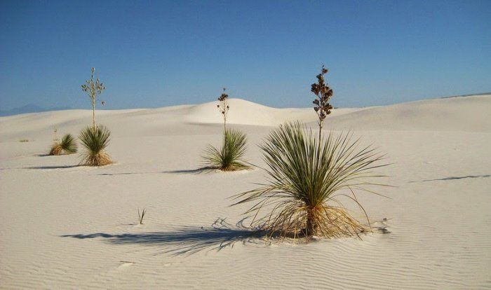 Белоснежная пустыня Уайт-Сандс