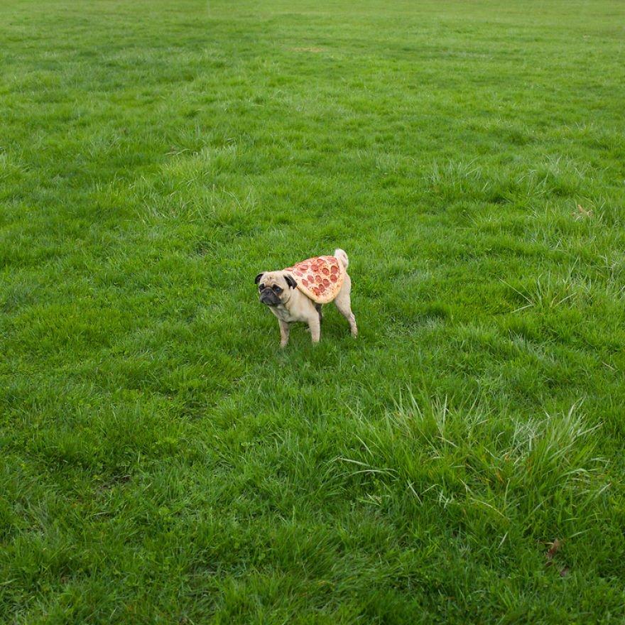 Приключения пиццы в фотографиях Джонпола Дугласа