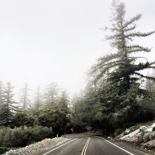 Необыкновенная глубина на фотографиях Конора МакНейла