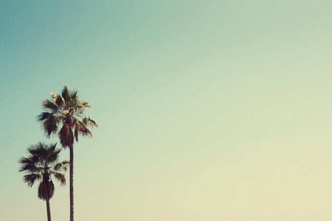Живые солнечные фотографии от Адама Ринди