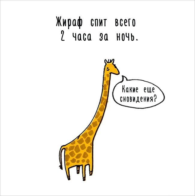 Интересные факты о животных в забавных комиксах