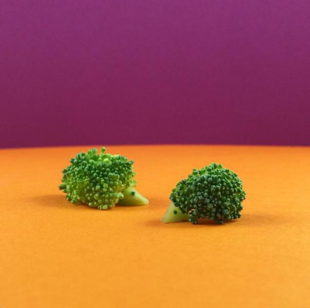 Скульптуры из еды от Манден Мэттерс