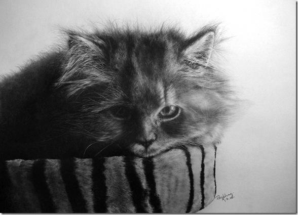 Рисунки простым карандашом от Пола Ланга