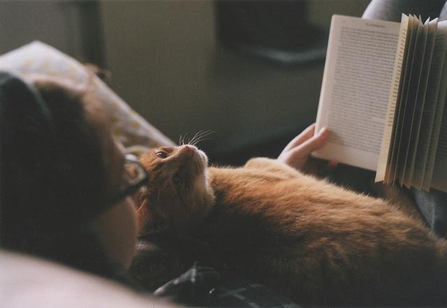 Как успокоить свои мысли перед сном