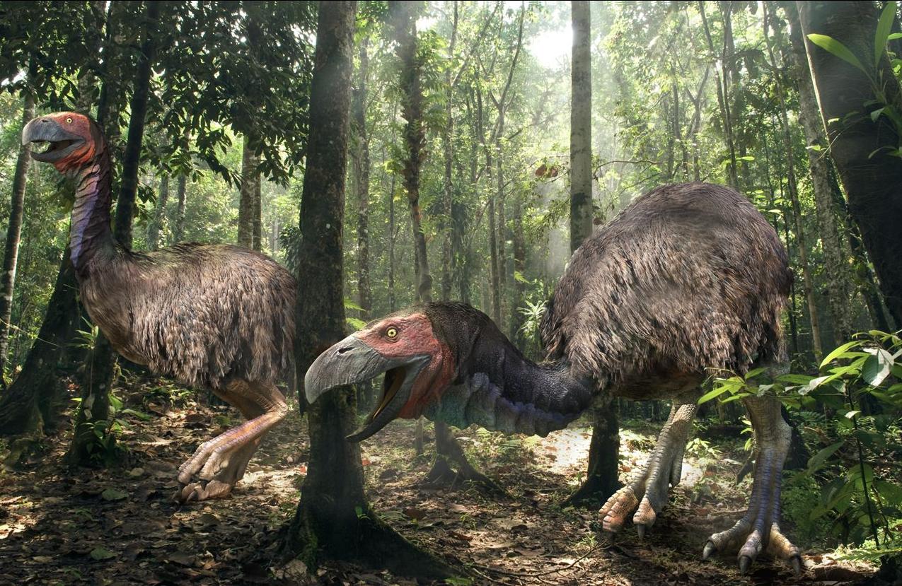 10 животных, которые вымерли до нашего появления