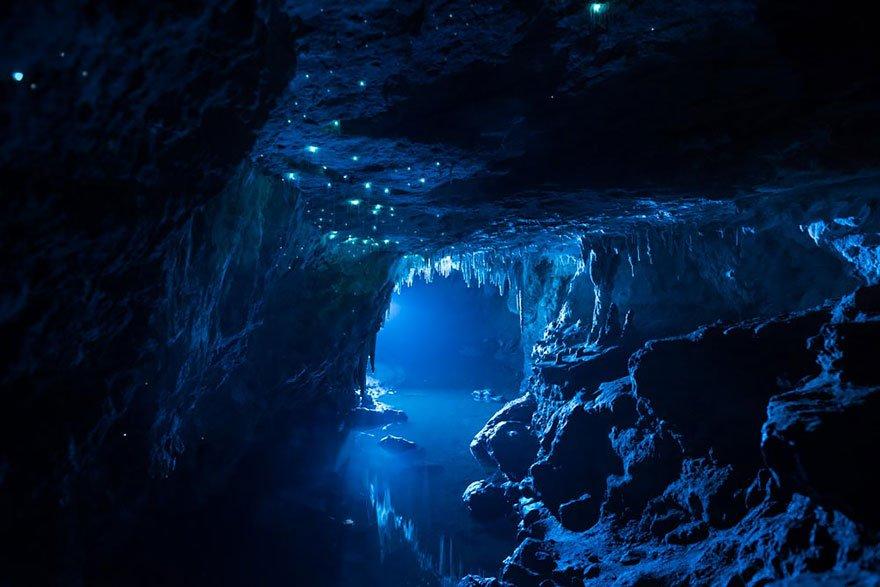 Светлячки в пещере Waitomo