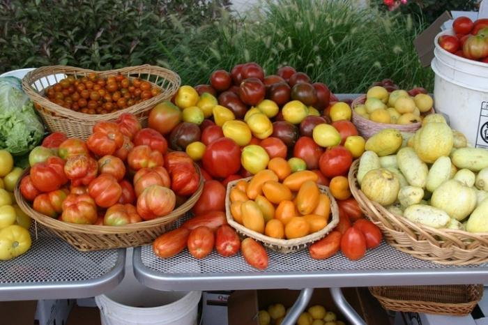 Полезные свойства помидоров