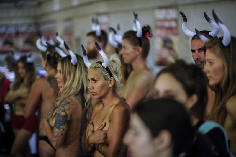 Защитники животных против корриды