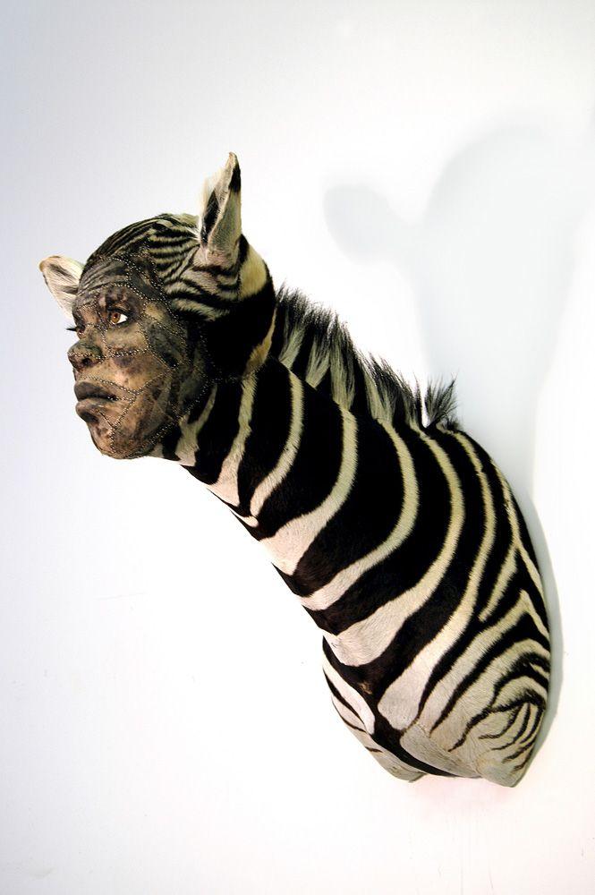 Чучела животных с человеческим лицом