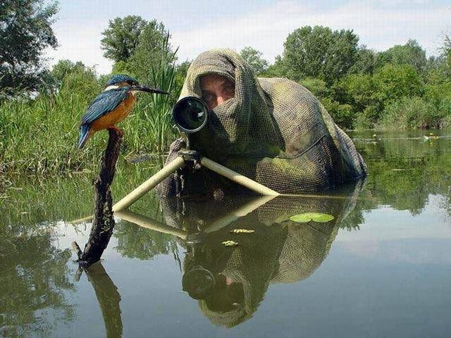 Фотоохотники за работой