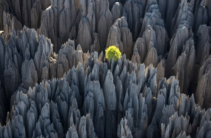 Удивительные места на планете нетронутые человеком