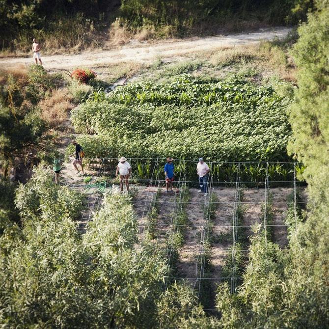 Испанские нудисты и нью-эйджеры восстанавливают заброшенные деревни