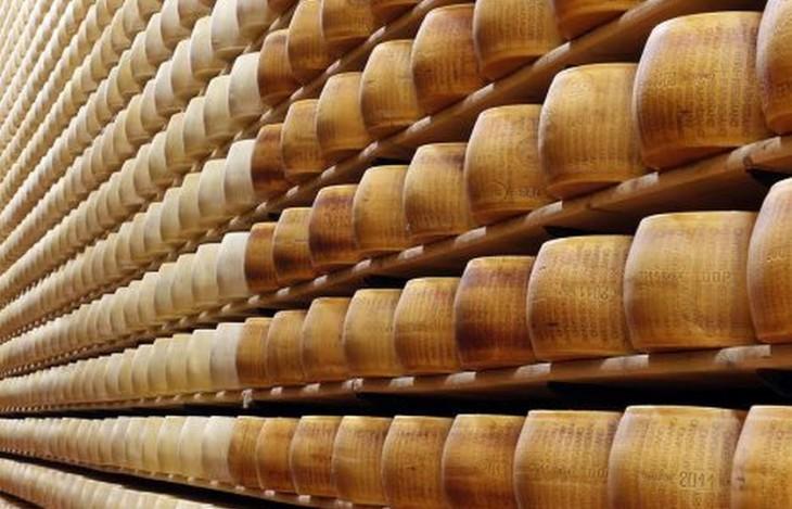 15 интересных фактов о сыре