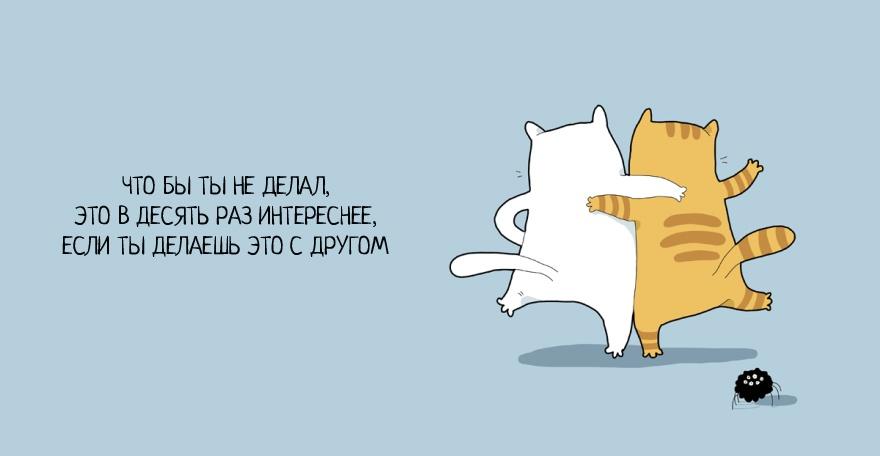 Как быть счастливым и не грустить: советы от котов