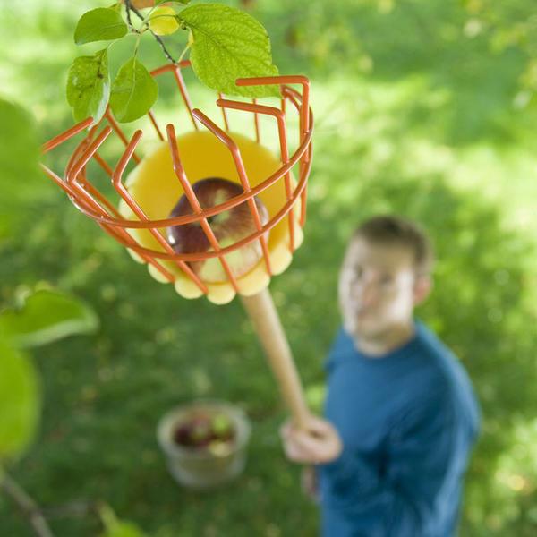 15 полезных изобретений для садовника