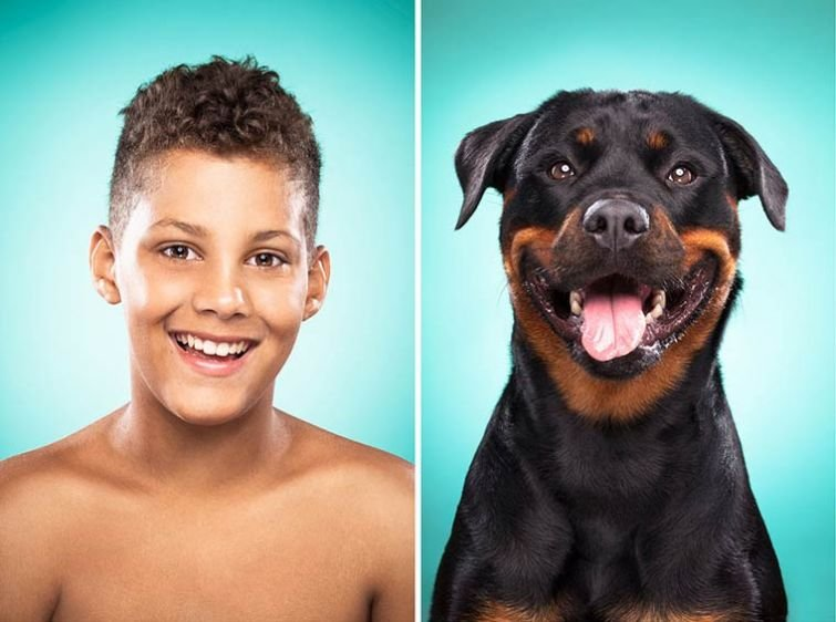 Собаки и их владельцы