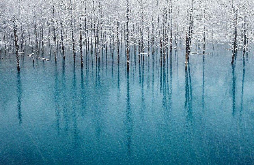 Потрясающие снимки, сделанные без помощи фотошопа
