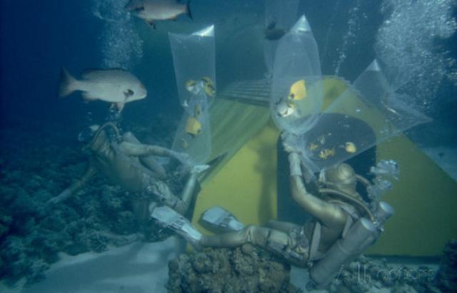 5 необычных подводных домов