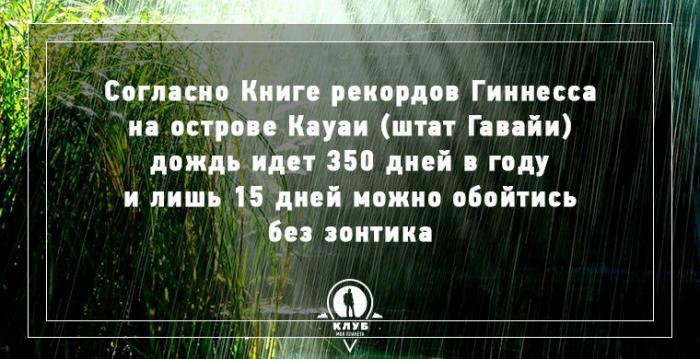 8 интересных фактов о дожде