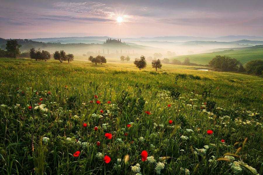 Красивые места на фотографиях Даниэля Рерихи