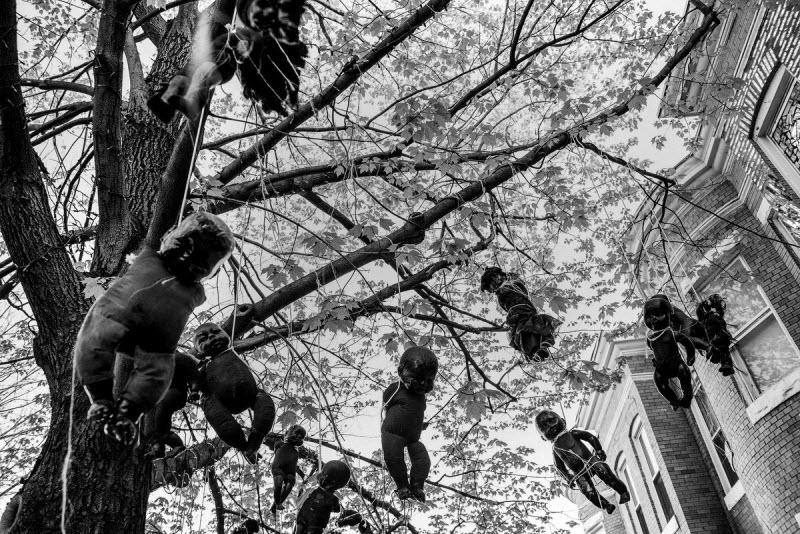 Лучшие фотографии студенческого сообщества фотографов