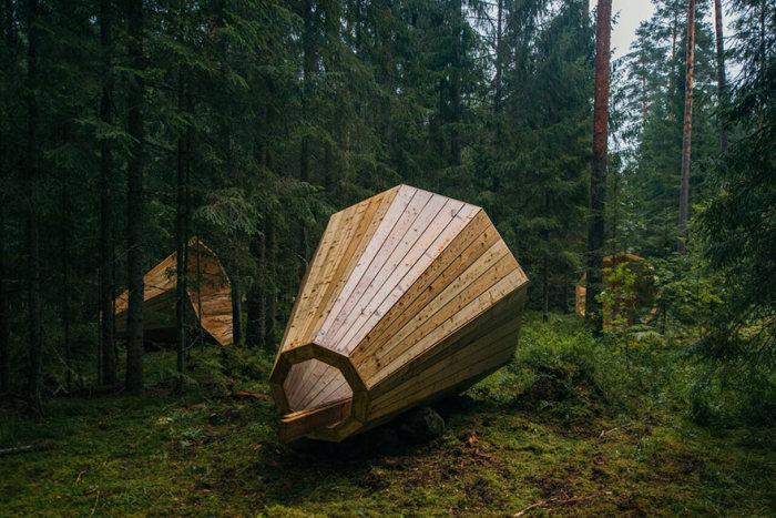 Усилители звуков природы в лесу