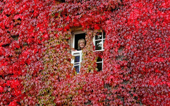 Красота осени в Великобритании