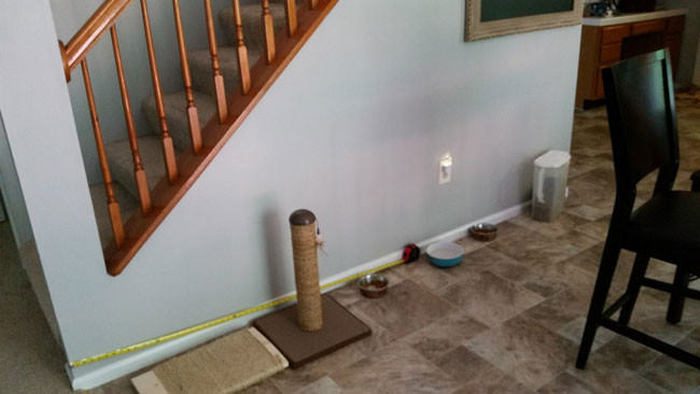 Оригинальный домик для собаки под лестницей