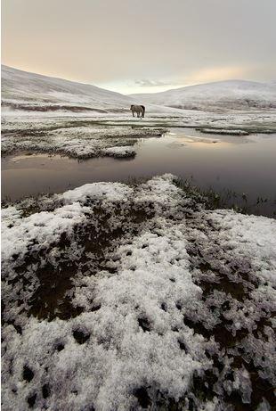 Невероятные пейзажи на фотографиях Хилари Янгер