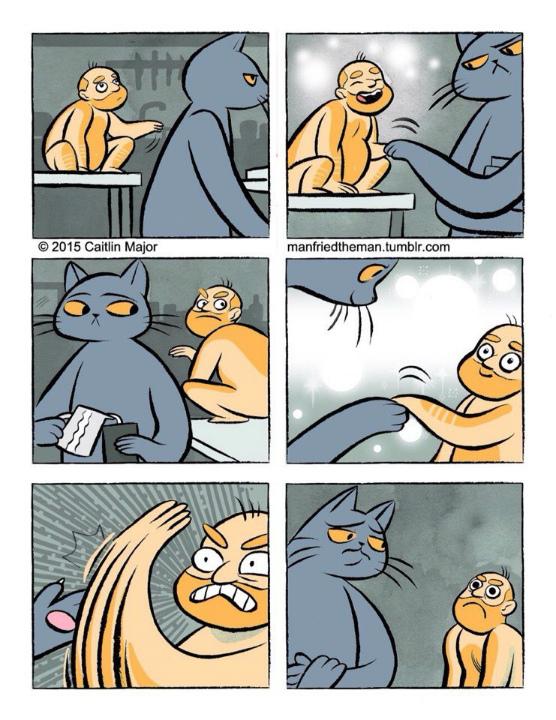 Забавные комиксы о параллельной вселенной кошек