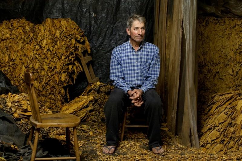 Табачные фермы и фермеры со всего мира