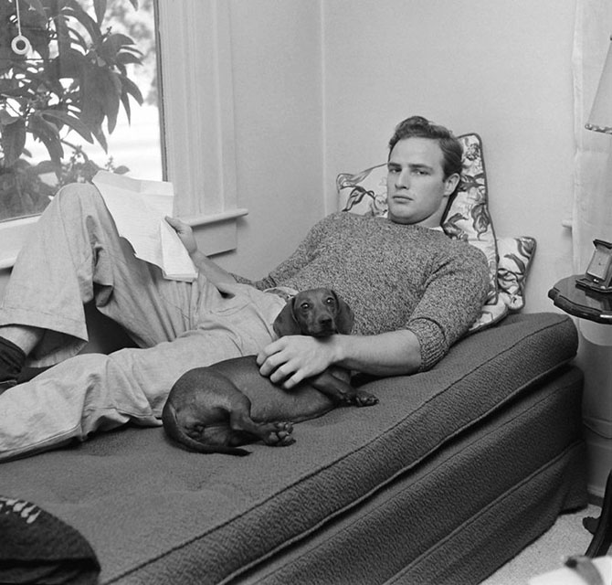 Великие люди и их собаки