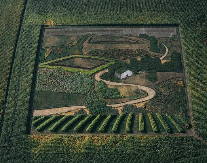 Потрясающие живые картины на полях