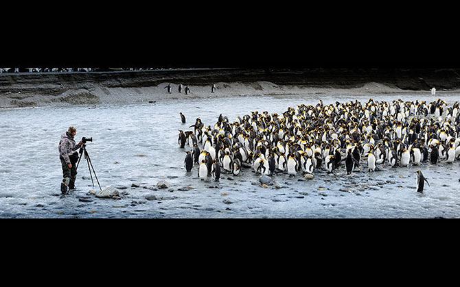 Красоты Антарктиды от фотографа Алекса Бернаскони