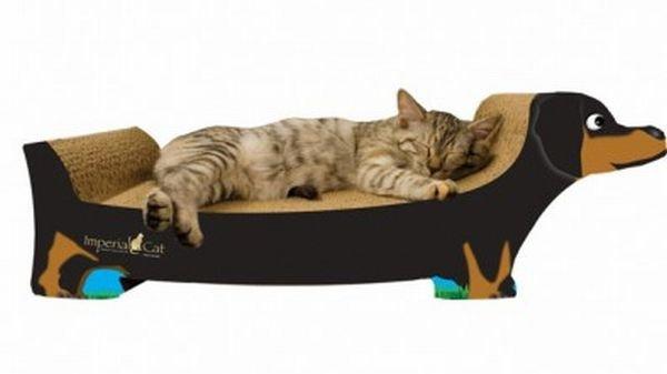 Необычные когтеточки для котов и кошек