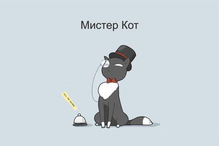 12 типов котов в веселых рисунках