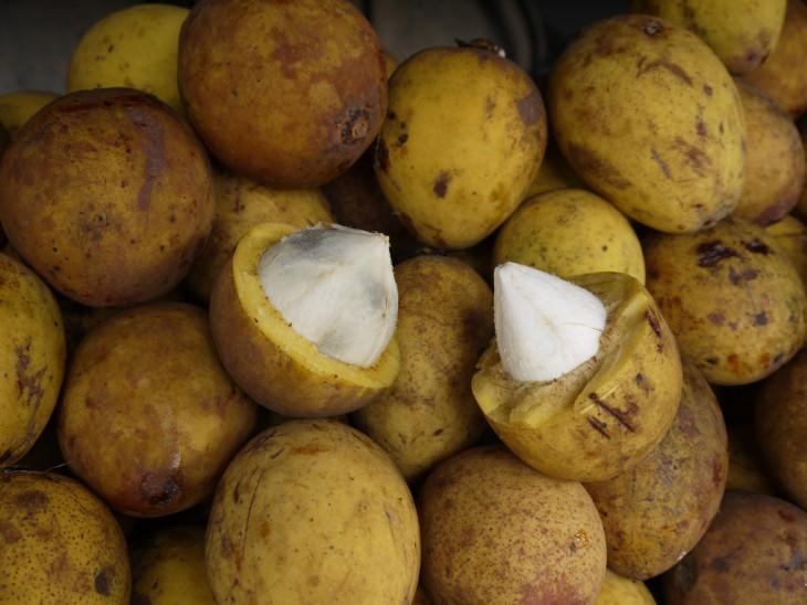 20 необычных экзотических фруктов