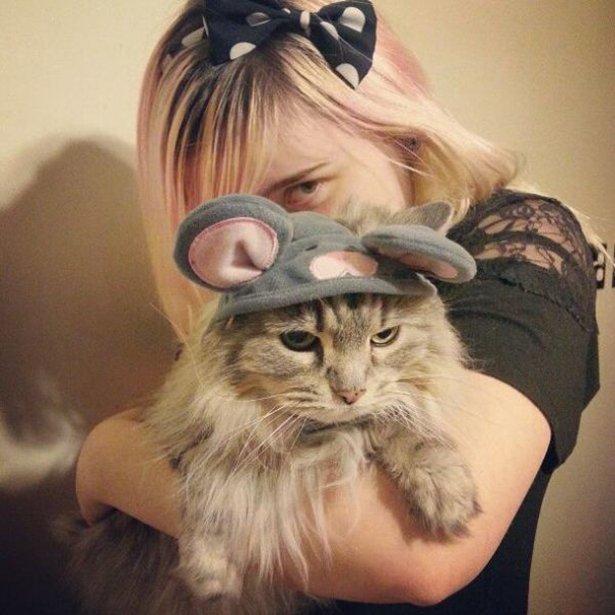 Кошки, которые недовольны своими хэллоуинскими костюмами