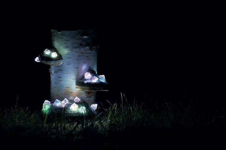 Оригинальные ночники, вдохновленные природой